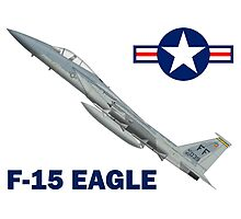 F-15C Eagle 94th Fighter Squadron USAF Photographic Print