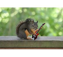 Rock and Roll Squirrel Photographic Print