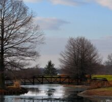 Mcbride Arboretum Winter Morning Sticker
