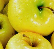 Yellow apples Sticker