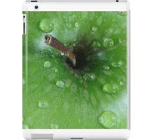 Green Apple iPad Case/Skin
