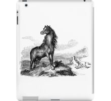 Vintage Wild Horse Stallion Illustration Retro 1800s Black and White Horses Image iPad Case/Skin