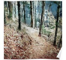 Woodland Trail Poster