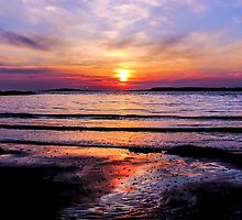 Dawn Delight by Wrayzo