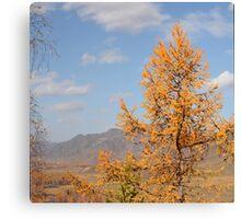 autumn Altai Mountains Canvas Print