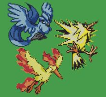 Legendary Birds by ceejsterrr