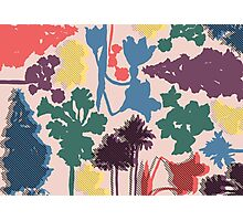 English Floral Photographic Print