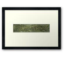 SES V01-04 Framed Print