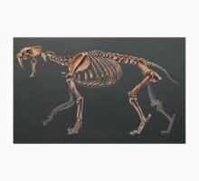 Smilodon Populator Skeletal Study No Labels One Piece - Short Sleeve