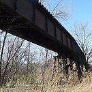 Abandoned River Line Trestle, Jersey City, New Jersey by lenspiro