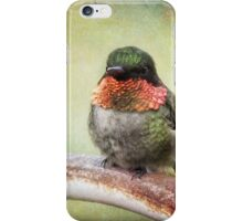 This is my spot, go find another one! iPhone Case/Skin