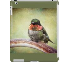 This is my spot, go find another one! iPad Case/Skin