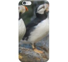 Twins or reflection iPhone Case/Skin
