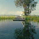 Tha Art of Floating by Beata  Czyzowska Young