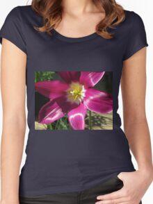 Purple Tulip Macro Women's Fitted Scoop T-Shirt