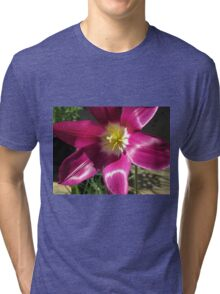 Purple Tulip Macro Tri-blend T-Shirt