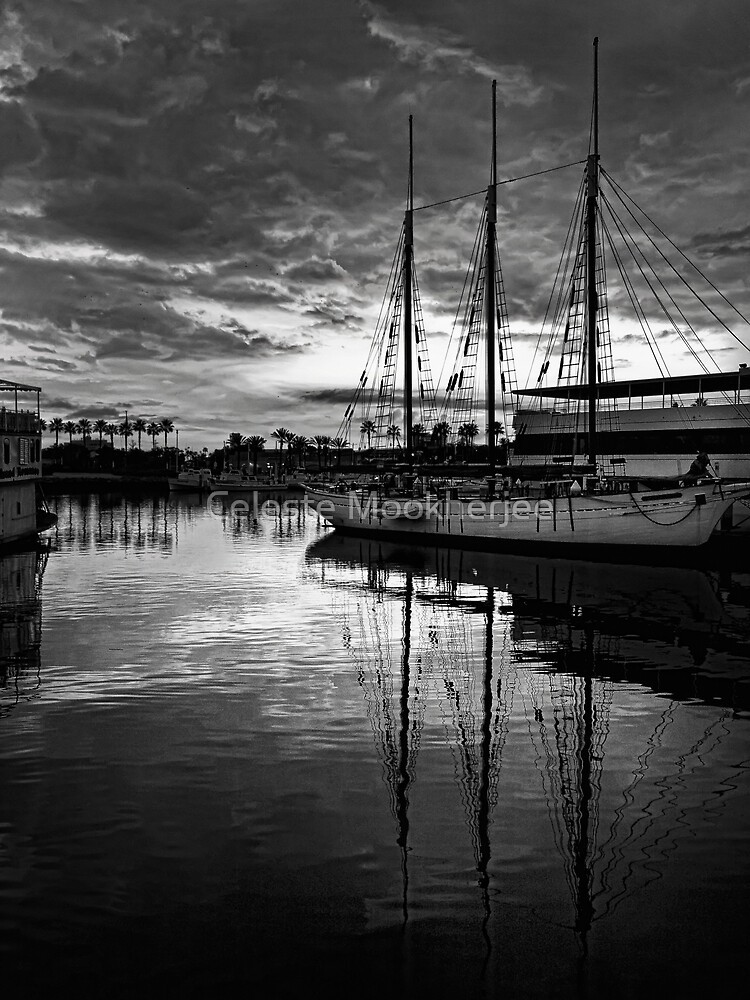 Tall ship at anchor by Celeste Mookherjee