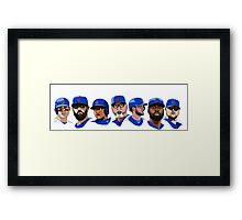 2016 Cubs Framed Print