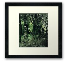 The Spirit of the Place  Framed Print