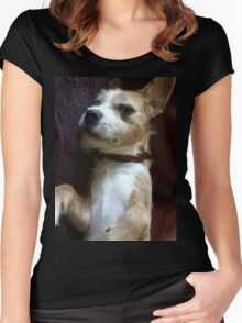 Scruff Doggy Dog Women's Fitted Scoop T-Shirt