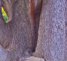 Tree Trunk Sticker