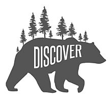 Discover Bear with Trees Photographic Print