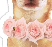 Chihuahua with Roses Sticker