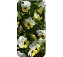 Yellow white flowers in the garden. iPhone Case/Skin