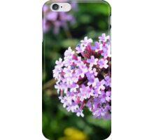 Macro on purple flowers in the garden. iPhone Case/Skin