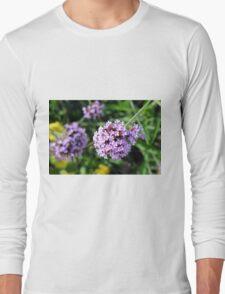 Macro on purple flowers in the garden. Long Sleeve T-Shirt