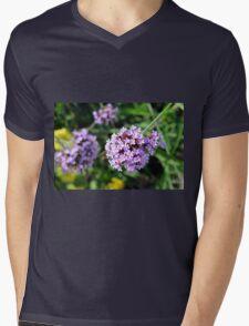 Macro on purple flowers in the garden. Mens V-Neck T-Shirt