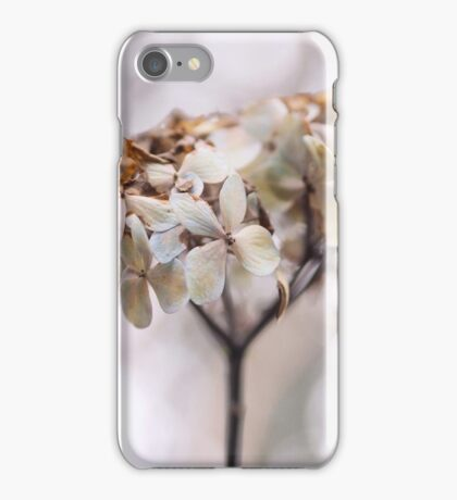 Pale Ardour iPhone Case/Skin