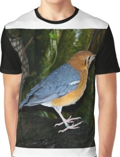 Colourful Bird Graphic T-Shirt