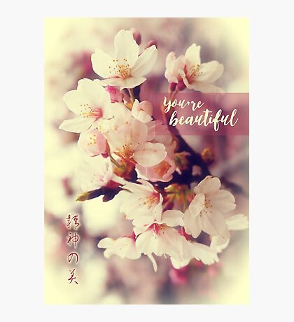 You're Beautiful Vintage White Pink Cherry Blossoms  Photographic Print