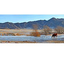 Mountain village winter brook Photographic Print