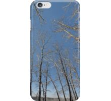 river water trees snow iPhone Case/Skin