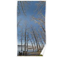 river water trees snow Poster