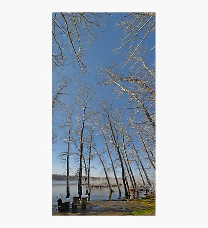 river water trees snow Photographic Print