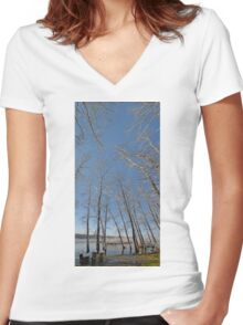 river water trees snow Women's Fitted V-Neck T-Shirt