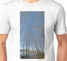 river water trees snow Unisex T-Shirt