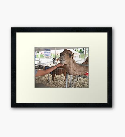 """Ooooooooh, Yeahhhh!""... prints and products Framed Print"