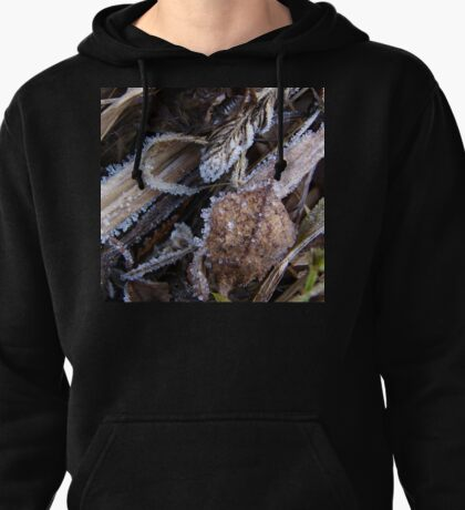 Frozen Grass, Leaves and Plants Pullover Hoodie