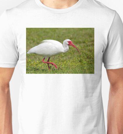 Ibis up close T-Shirt
