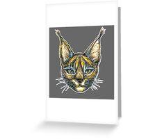 Caracal cat  Greeting Card