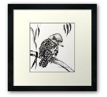 Australian Kookaburra Framed Print
