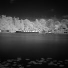 Amstel River in Infrared #3 by ColourBlind