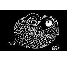 Hatchling -  White Line Art on Black  Photographic Print