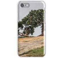 Tree, Gneiss Rock, Lalbagh Botanical Garden, Bangaluru, India iPhone Case/Skin
