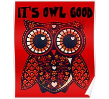 Owl - It's owl good Poster
