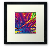 Tropicalia strikes  Framed Print